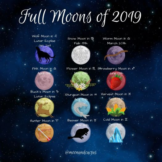 New Moon Taurus 2019 – The Triumphant Year